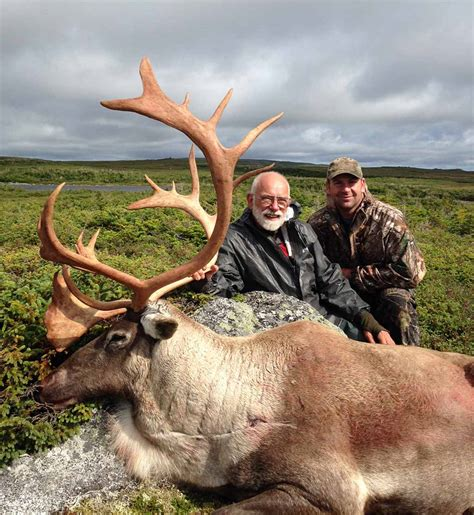 Newfoundland Moose Hunting - News And Advice | Guidefitter