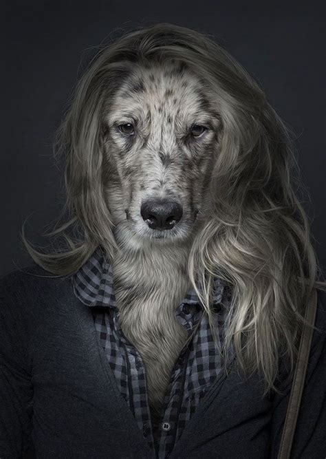 Dogs Dressed as Humans (7 Photos) - FunCage