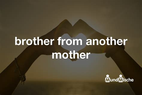 brother from another mother - Bedeutung und Definition